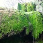 Nohner Wasserfall - ganz nah