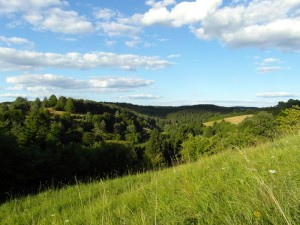Blick zum Altburgtal